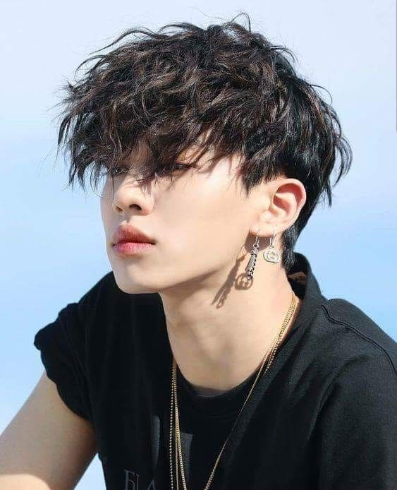 Elements of Korean Men\u0027s Hairstyles 2019 , Hairloom  Hair